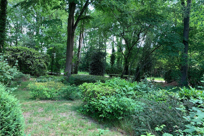 View photo 3 of Bergweg 28