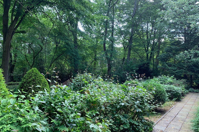 View photo 4 of Bergweg 28