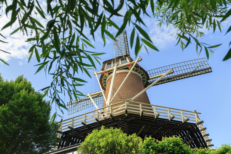 View photo 1 of Molenstraat 22
