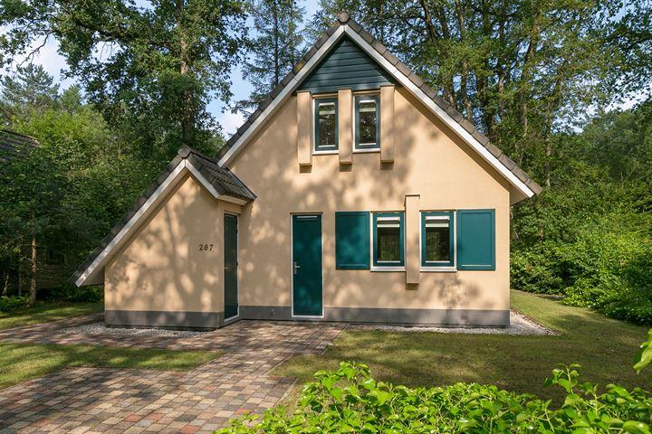 Hof van Halenweg 2 267