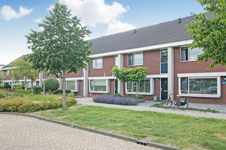 Bekijk foto 2 van Ruisvoorn 164