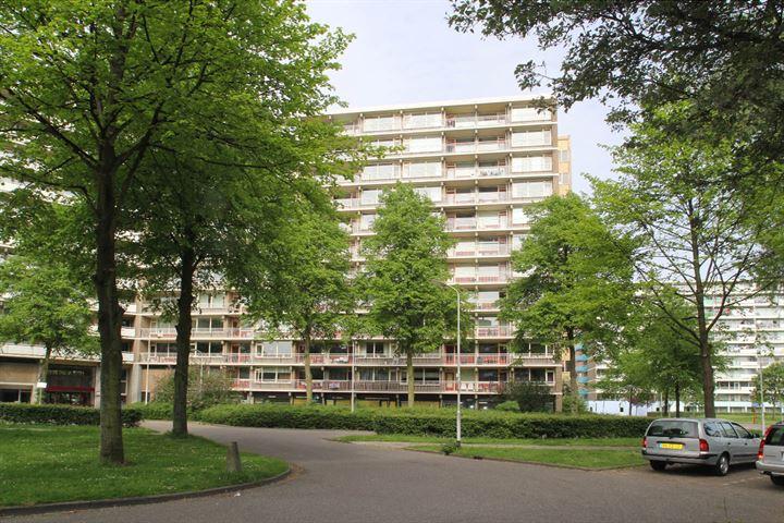 Dunantstraat 851