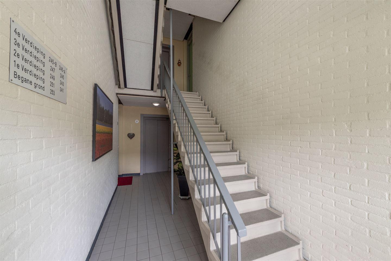 Bekijk foto 6 van Hendrik Hamerstraat 245 b