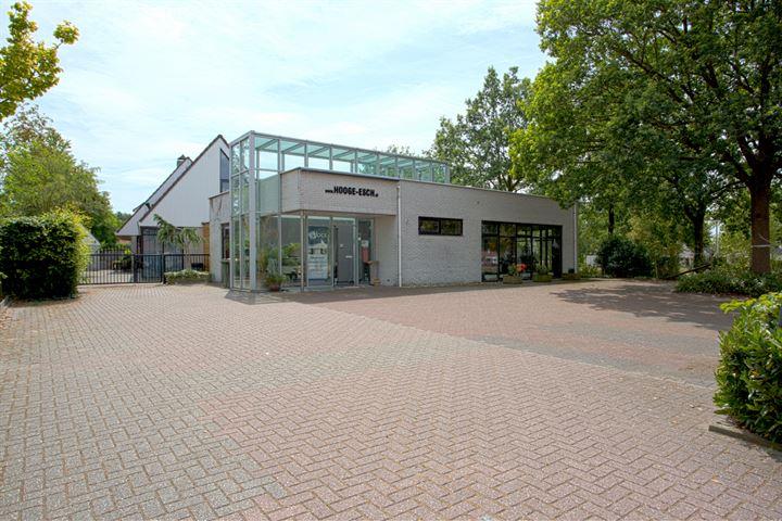 Bentheimergraven 35