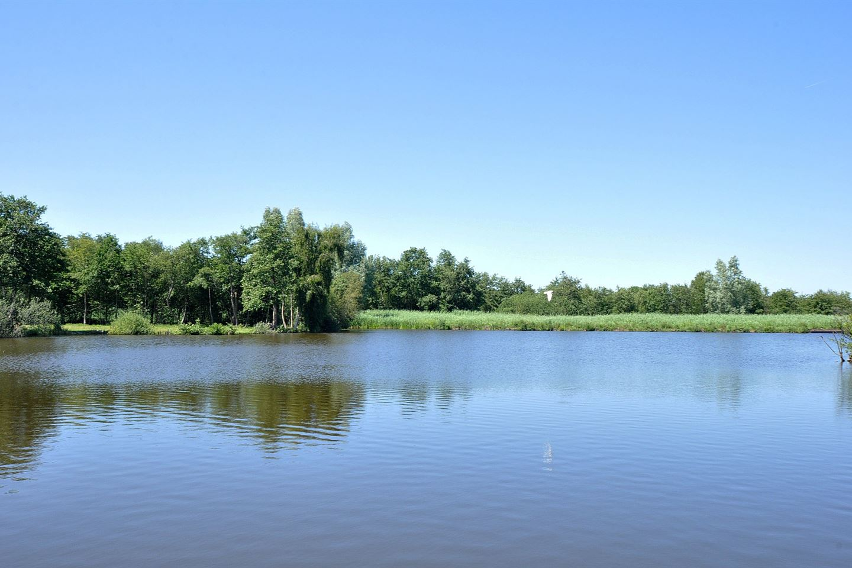 Bekijk foto 2 van Oudedijk 17