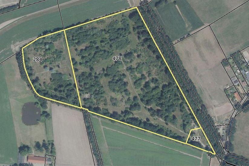 Bekijk foto 1 van Zoomvlietweg