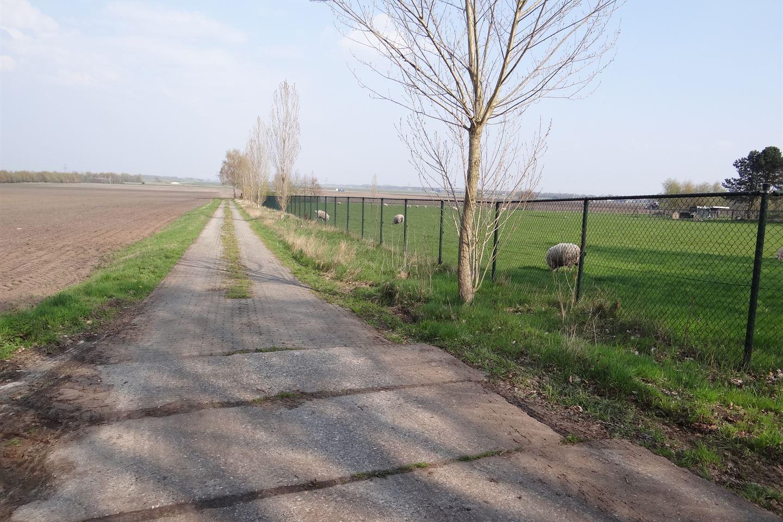 Bekijk foto 4 van Emmerhoutstraat