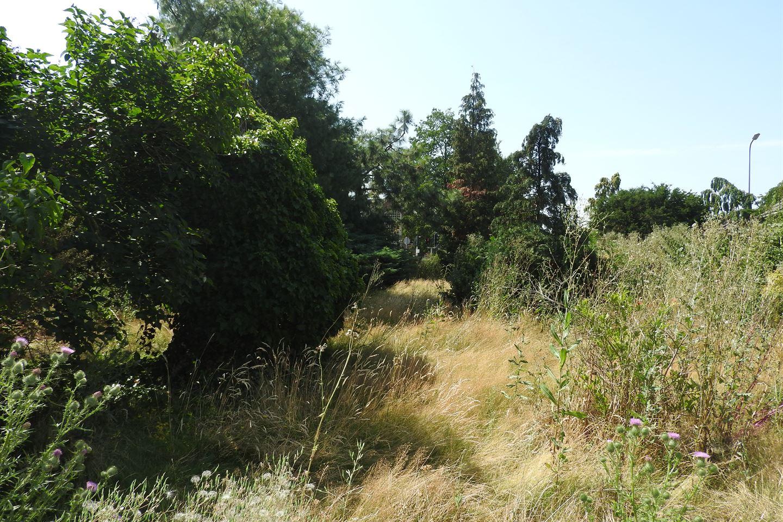 View photo 4 of Zutphenseweg 7