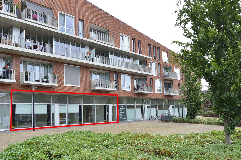 Bekijk foto 1 van Breemarsweg 262