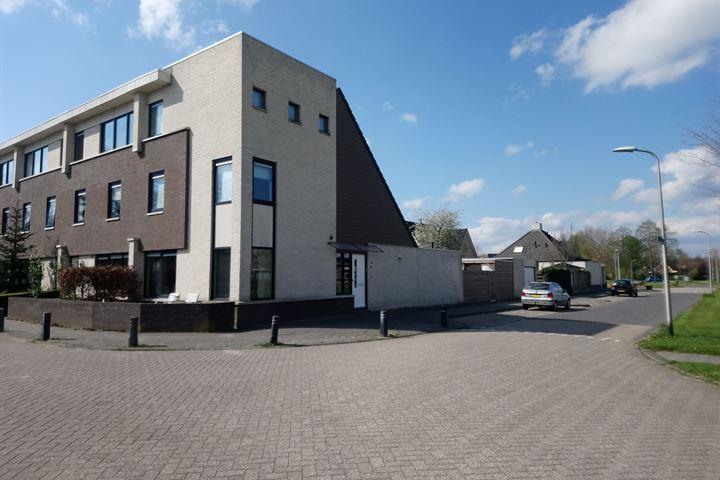 Biesbosch 2