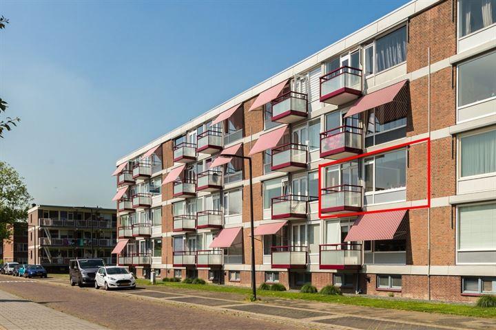 van Viandenstraat 35