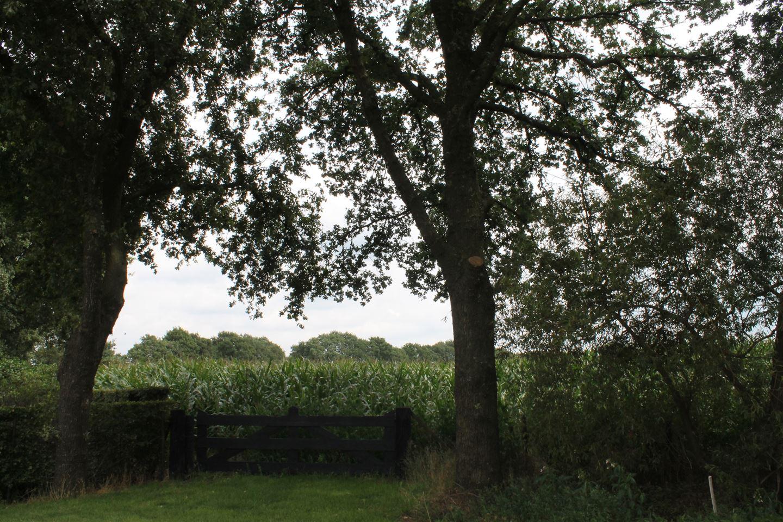 Bekijk foto 3 van Meulunterseweg