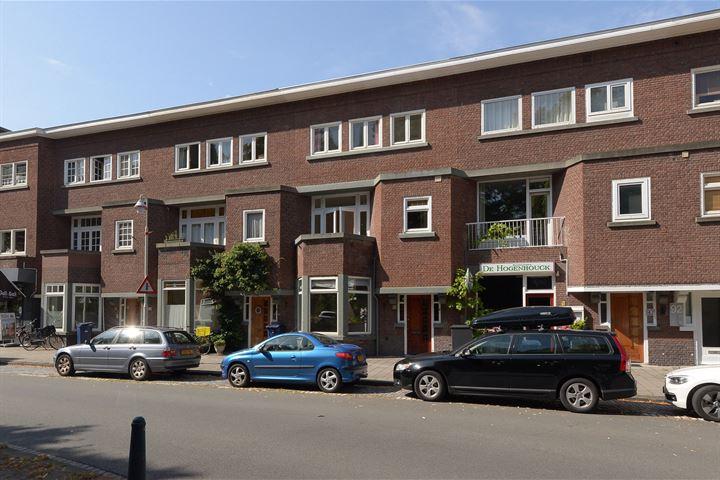 Van Hogenhoucklaan 88