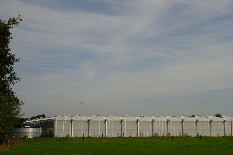 View photo 2 of Schriekenweg 6 a