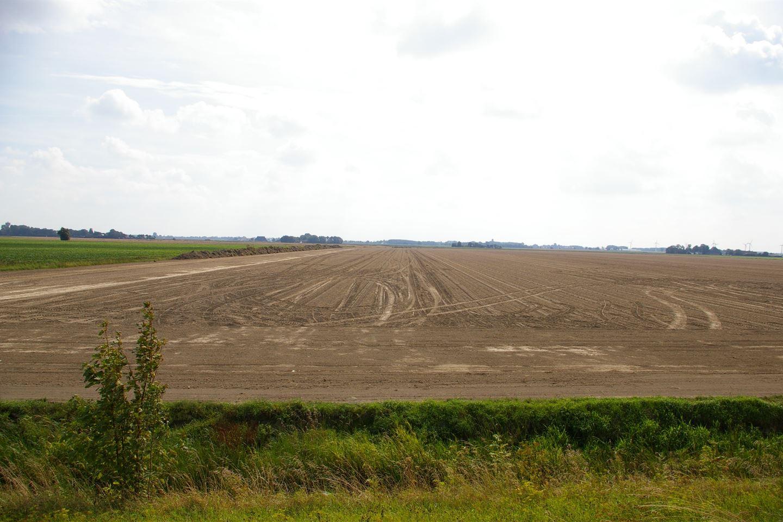 Bekijk foto 3 van Oudebildtdijk 1066