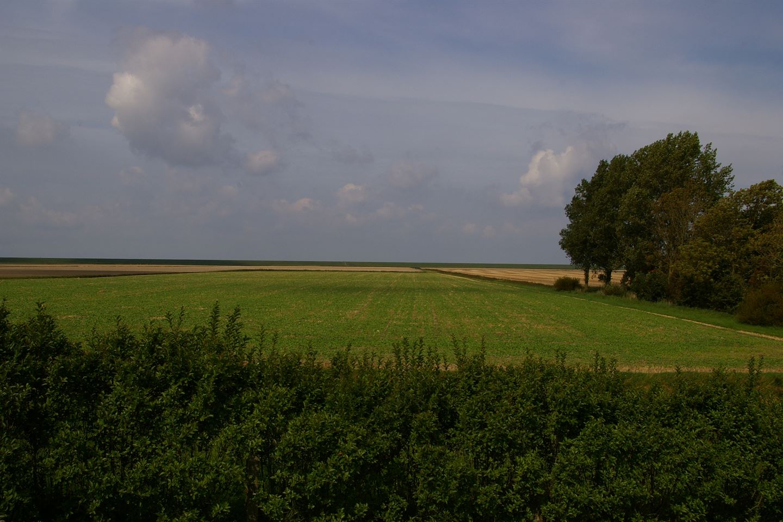 Bekijk foto 5 van Oudebildtdijk 1066
