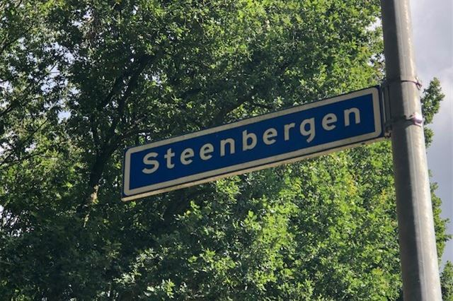 Bekijk foto 1 van Steenbergen
