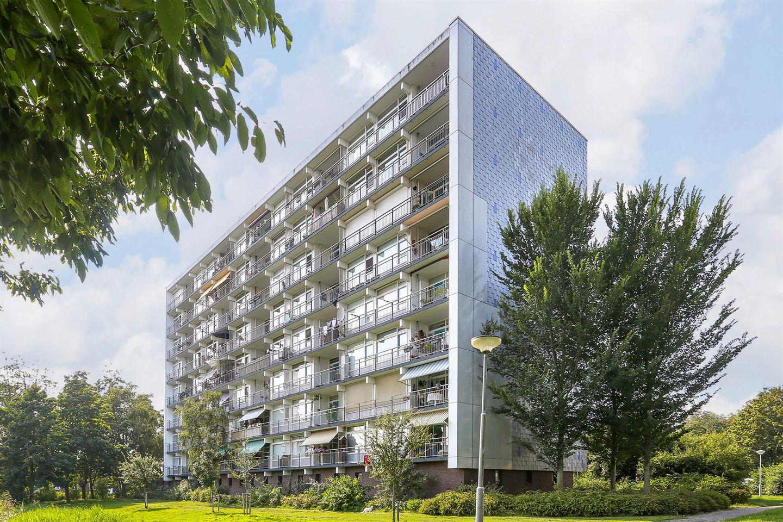 Bekijk foto 1 van Luxemburglaan 499