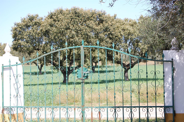 Bekijk foto 2 van R. de Santo António