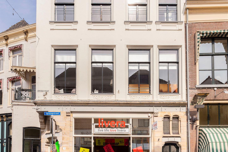 Bekijk foto 2 van Sprongstraat 1