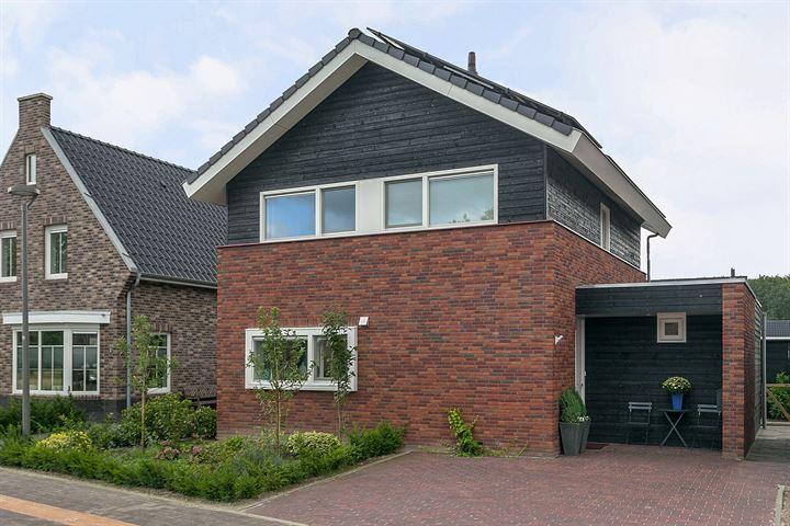 Brinkhof 3