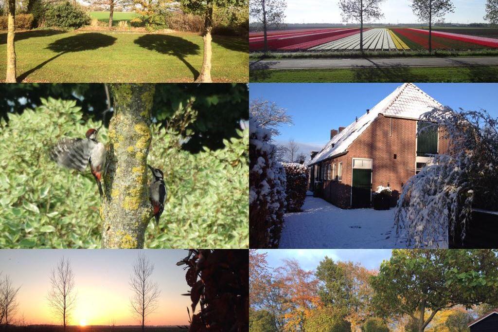 Bekijk foto 4 van Weg van Ongenade 4 II