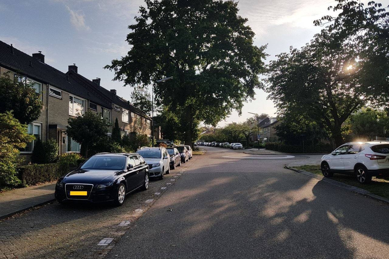 Bekijk foto 2 van Domineesbergweg 80