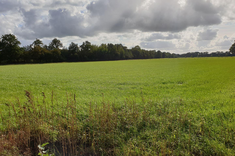 Bekijk foto 2 van Holtjesweg