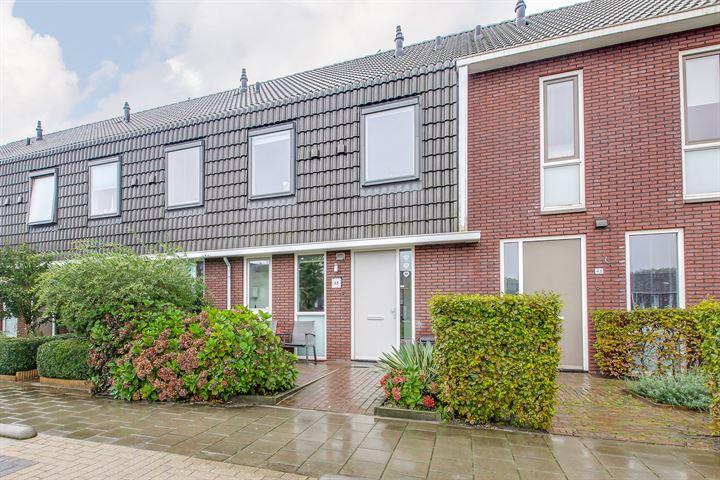 Colijnhof 48