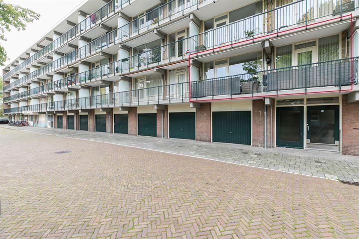 Biesbosch 99
