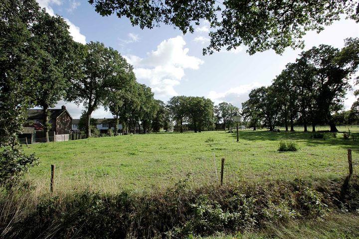 Witmanweg