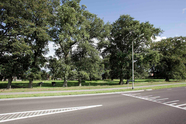 Bekijk foto 3 van Witmanweg