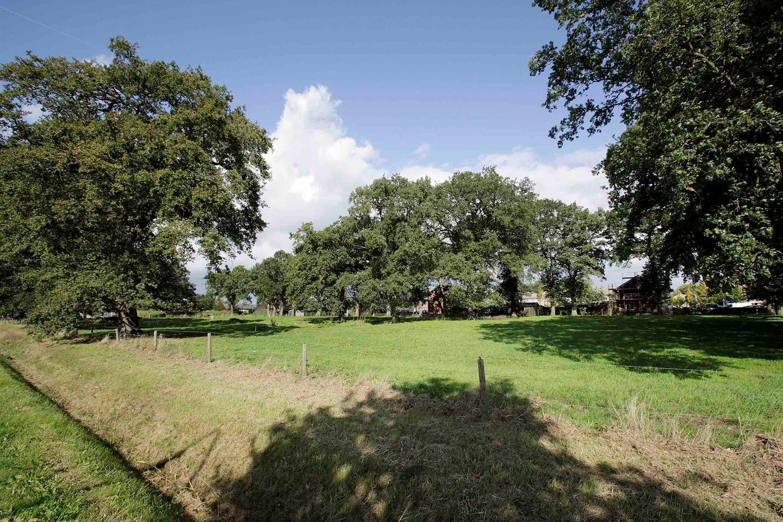 Bekijk foto 4 van Witmanweg