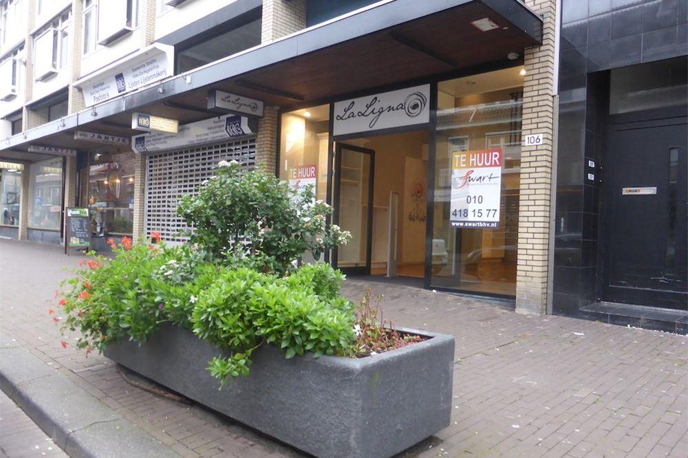 Bekijk foto 5 van Bergse Dorpsstraat 106