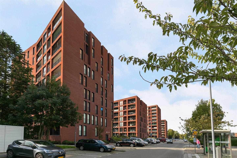 Bekijk foto 1 van Wijnruitstraat 373