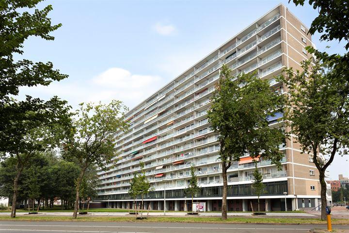 Burgemeester Hogguerstraat 1171