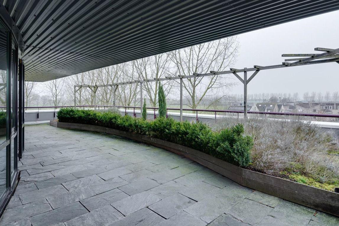 Bekijk foto 3 van Agro Business Park 82
