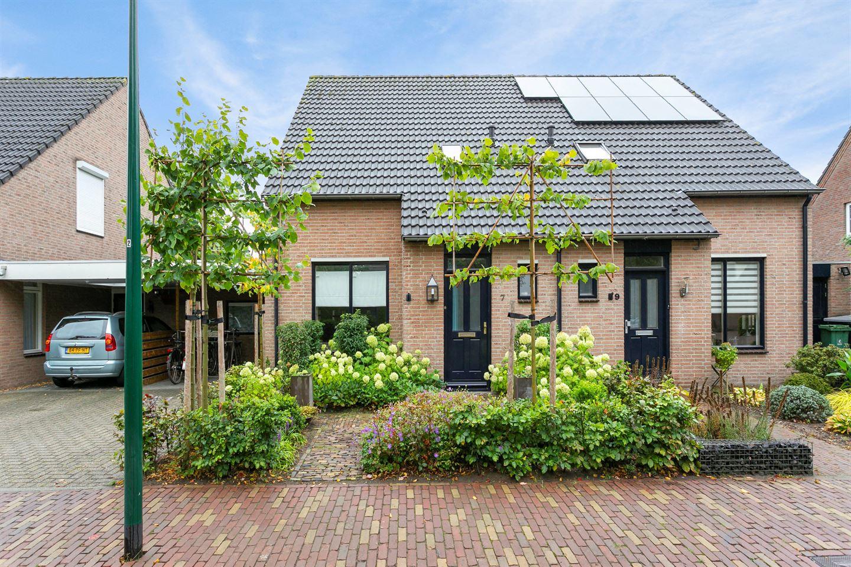 Bekijk foto 1 van Haagbeuk 7