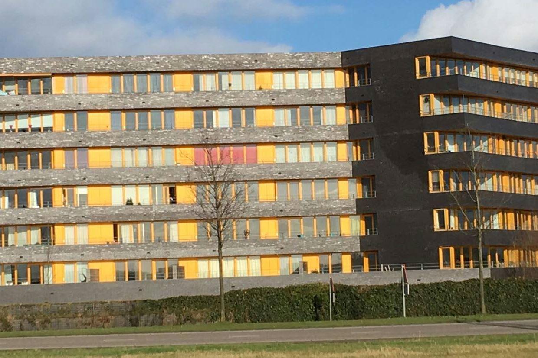 Bekijk foto 1 van Langstraat 71