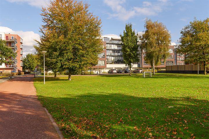 Oldenallerhout 86