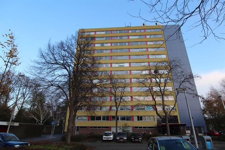 Boeierstraat 167