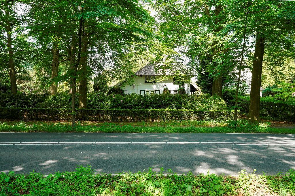 Bekijk foto 2 van Moergestelseweg 46