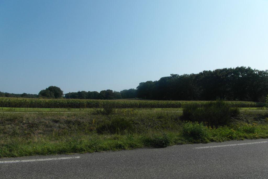 Bekijk foto 1 van Lochemseweg