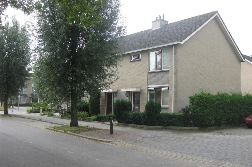 Bekijk foto 1 van Gasthuispolderweg 6