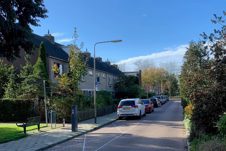 Bekijk foto 5 van Meidoorn 9