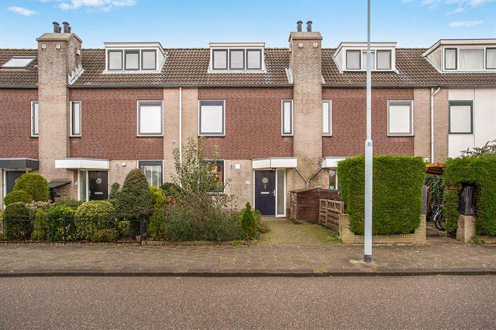 Waltmanstraat 17