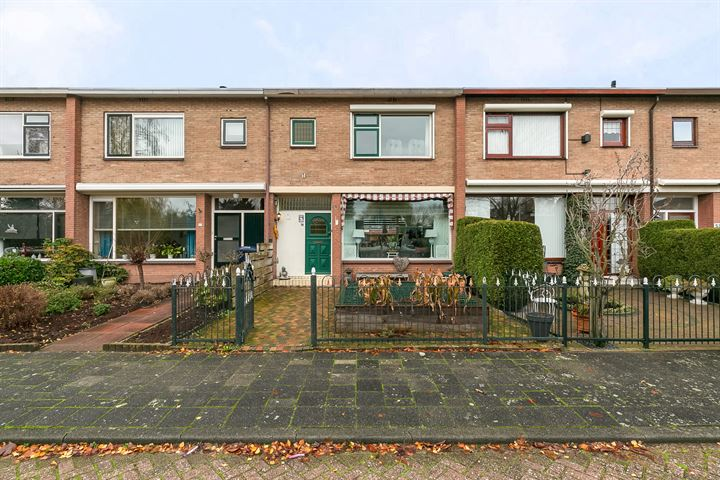 Jan Steenstraat 49