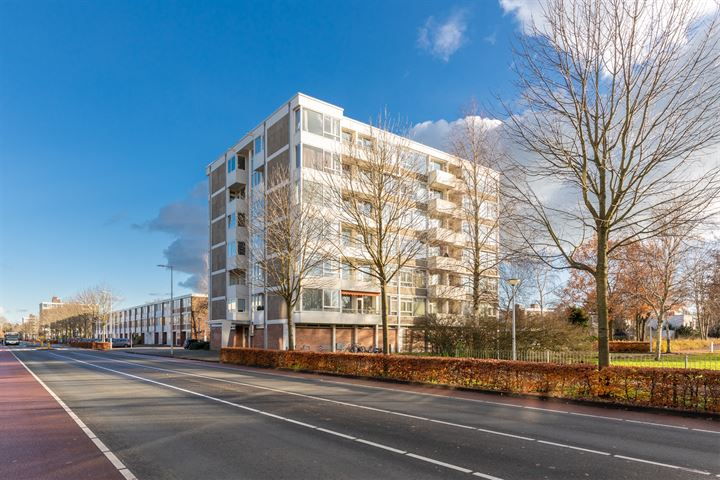 Van Boshuizenstraat 303