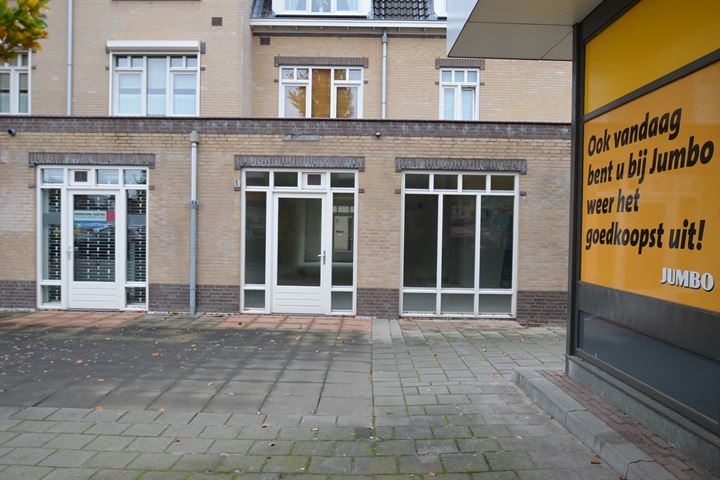Pieter Breughelstraat 55, Bergen (LI)