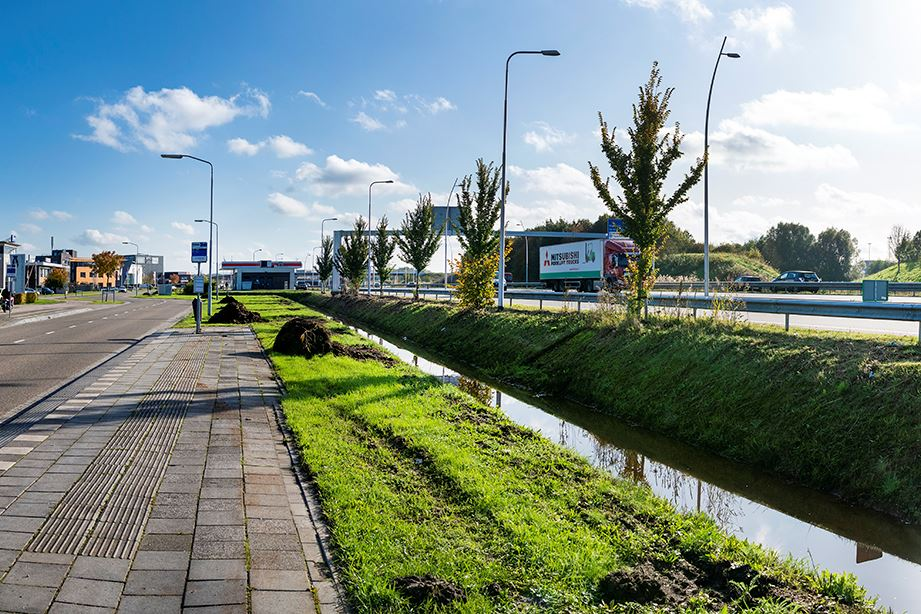 Bekijk foto 1 van Prof. Asserweg 22